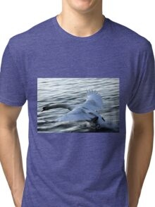 swan on the lake Tri-blend T-Shirt