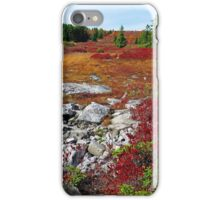 The Rocky Trail iPhone Case/Skin