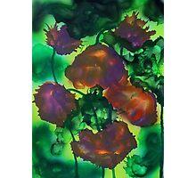 Tulipes pourpres dans le feuillage Photographic Print