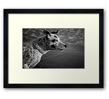 You talking' to me? Framed Print
