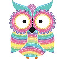 Colourful owl Photographic Print