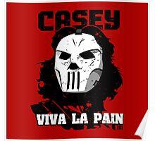 Viva La Casey Poster