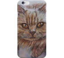 Cat Art - Long Haired Cat Staring at You iPhone Case/Skin
