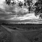 Autumn storms. by Paul Pasco