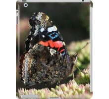 A Red Admiral Butterfly iPad Case/Skin