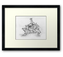 Murex Shell Framed Print