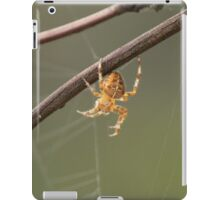 A Spiders Home iPad Case/Skin