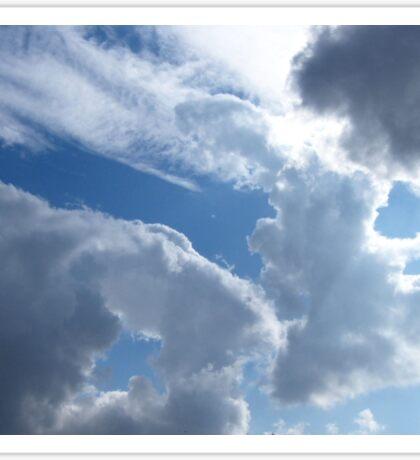 Fluffy animal clouds.... Sticker