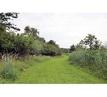 Trail to Mozingo Lake Photographic Print