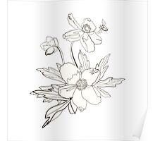 Bunch of spring anemones Poster