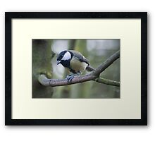 """Well hello there!"" - Tit Framed Print"