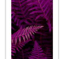 T purple fern Sticker