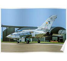 Panavia Tornado F.2 ZD941/AU Poster