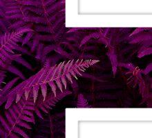 F purple fern Sticker