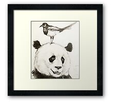 Panda and the Magpie Framed Print