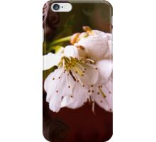 Cherry blossom in liquids iPhone Case/Skin