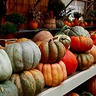 Pumpkin Display, Green Farms, Canton, Ohio. by Billlee