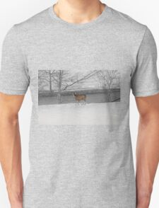 When Food Is Scarce T-Shirt