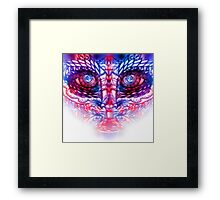 Fractal Face Framed Print