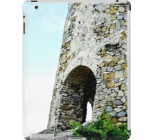Sugar Mill iPad Case/Skin