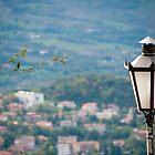 Lantern on the Hill by Rae Tucker