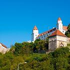 Bratislava Castle by Rae Tucker