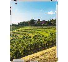 grapevine field in the italian countryside iPad Case/Skin