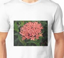 Bouquet of red Unisex T-Shirt