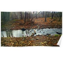 River Scene Poster