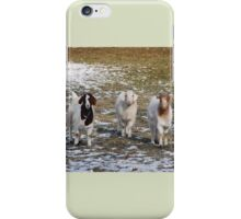 The Three Goats iPhone Case/Skin
