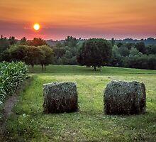 End Of Summer by barkeypf