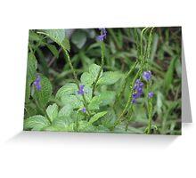 Purple sprinkled on green Greeting Card