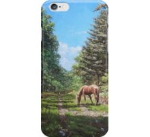 Horse in New Forest iPhone Case/Skin