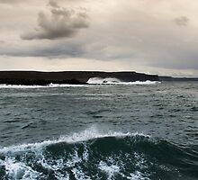 Cliffs of Moher from Doolin Harbour Cruise by serenity-photos