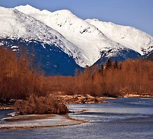 Taiya river in Winter by Yukondick