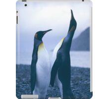 King Penguins iPad Case/Skin