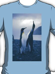 King Penguins T-Shirt