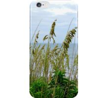 Dune Grass, Nags Head iPhone Case/Skin