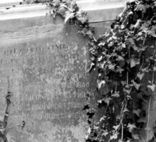 Grave with ivy Sticker