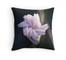 Native Australian Daisy Throw Pillow