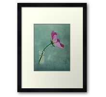 The flower speaks of love silently, in a language known only to the heart Framed Print