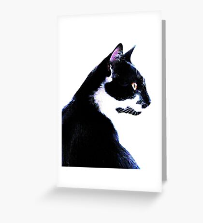 Bandit A Fetching Cat Greeting Card