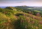 British Camp in late Summer . Malvern Hills by Angie Latham