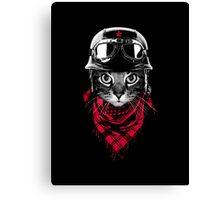 Adventure Cat Canvas Print