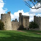 Bodiam Castle  by hootonles