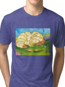 To Tame A Ninetails Tri-blend T-Shirt