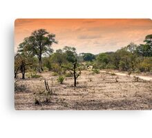 AWESOME SOUTH AFRICA - SAVANNAH SUNSET Canvas Print