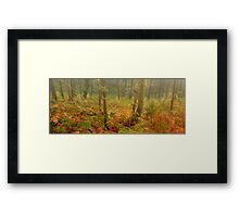 Autumn at Brock Bottom Framed Print