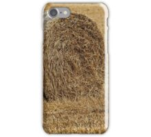 On the green line iPhone Case/Skin