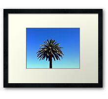 Palm Life Framed Print